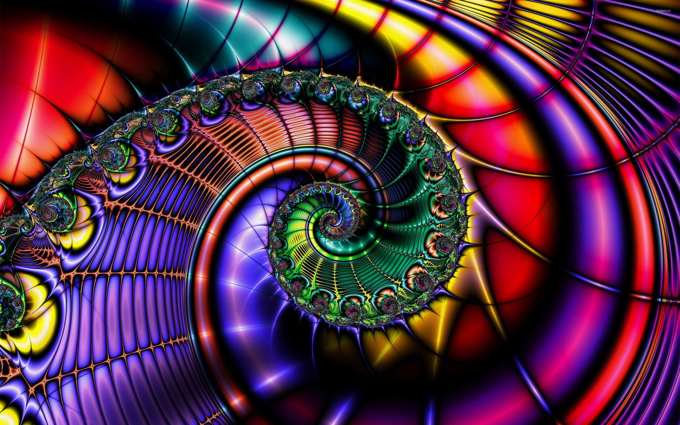 colorful fractal shell wallpaper - 1029285