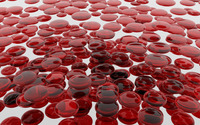 Blood cells wallpaper 2560x1600 jpg