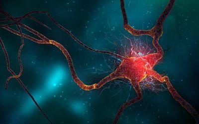 Brain cell wallpaper