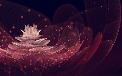 Fractal flower wallpaper