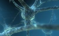 Neurons [2] wallpaper 1920x1200 jpg