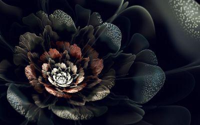 Sparkling fractal flower wallpaper