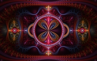Amazing fractal flowers in the frame wallpaper 1920x1200 jpg