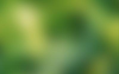 Bright green blur wallpaper