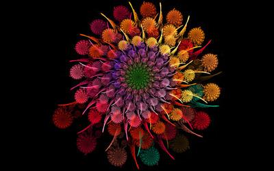 Colorful fractal flower wallpaper