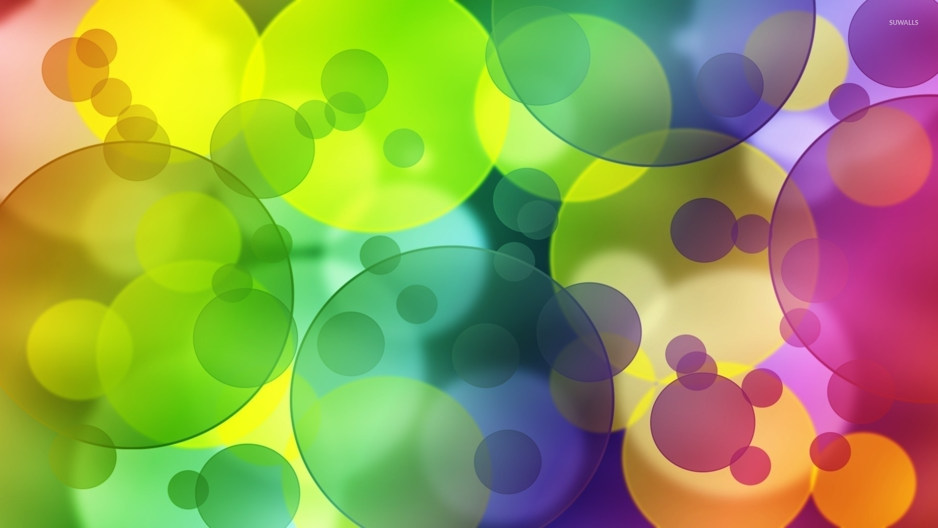 Colorful transparent bubbles wallpaper - Abstract ...