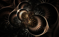 Curves [43] wallpaper 2560x1600 jpg