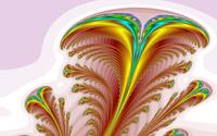 Feather wallpaper 2560x1600 jpg