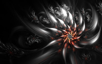 Flowers [7] wallpaper 2560x1600 jpg