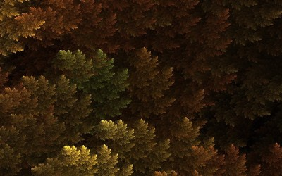 Fractal autumn trees wallpaper