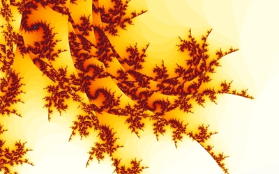 Fractal curves wallpaper
