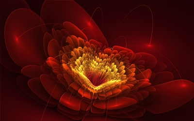 Golden core of the red flower wallpaper