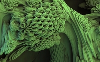Green fractal wallpaper 3840x2160 jpg