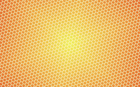 Honey pattern wallpaper 2560x1600 jpg