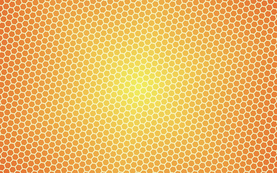 Honey pattern wallpaper