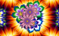 Pink fractal flowers wallpaper 1920x1080 jpg
