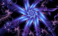 Purple fractal flower wallpaper 2560x1440 jpg