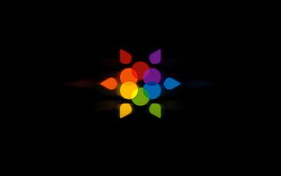 Rainbow flower wallpaper