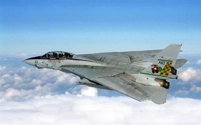 Grumman F-14 Tomcat wallpaper