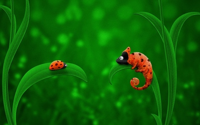 Ladybug and Chameleon wallpaper