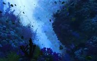 Tropical fish [2] wallpaper 1920x1080 jpg