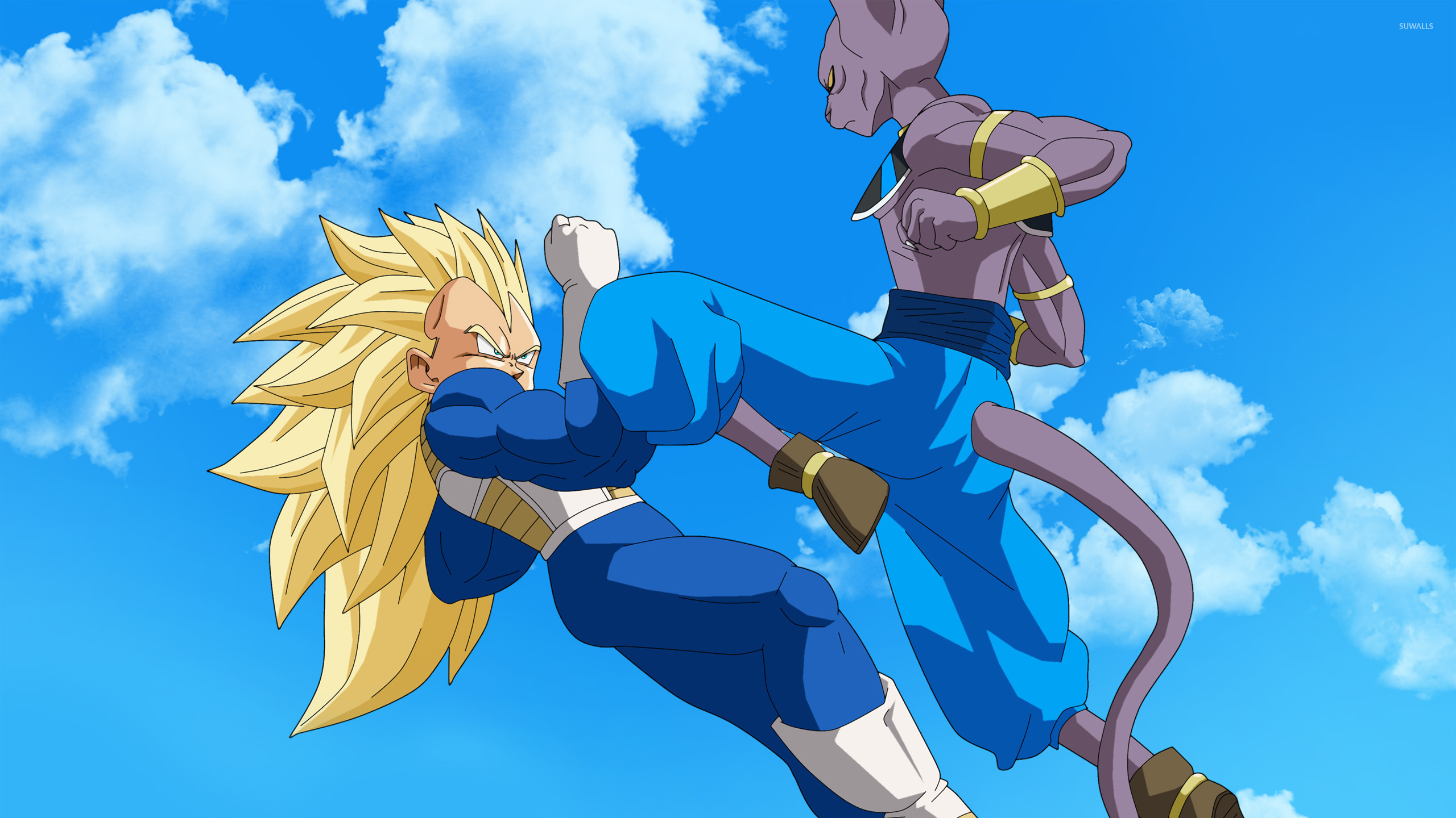 Bills and Vegeta - Dragon Ball Z Battle of Gods wallpaper 2560x1440 jpg