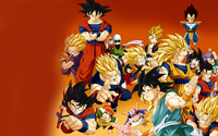 Dragon Ball Z [2] wallpaper 2560x1600 jpg