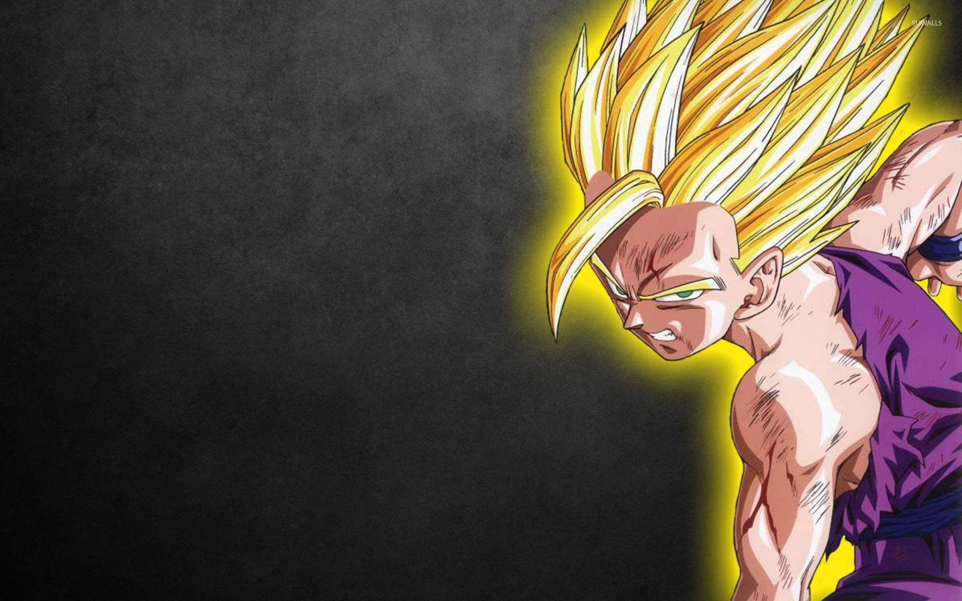 Goku - Dragon Ball Z [2] wallpaper - Anime wallpapers - #16661
