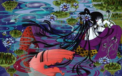 Himawari Kunogi - xxxHolic [2] wallpaper