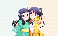 Karen Araragi and Tsukihi Araragi - Bakemonogatari wallpaper 1920x1200 jpg