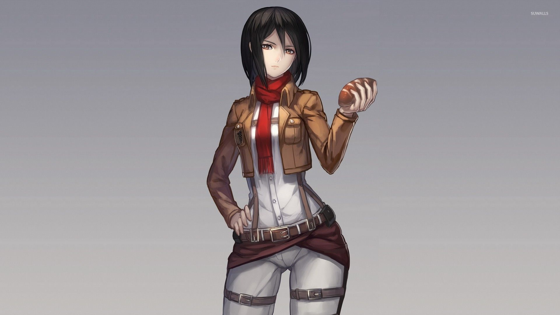 Mikasa Ackerman - Attack on Titan [14] wallpaper - Anime ...