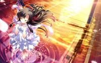 Sakura Saku - Nodame Cantabile wallpaper 2560x1600 jpg