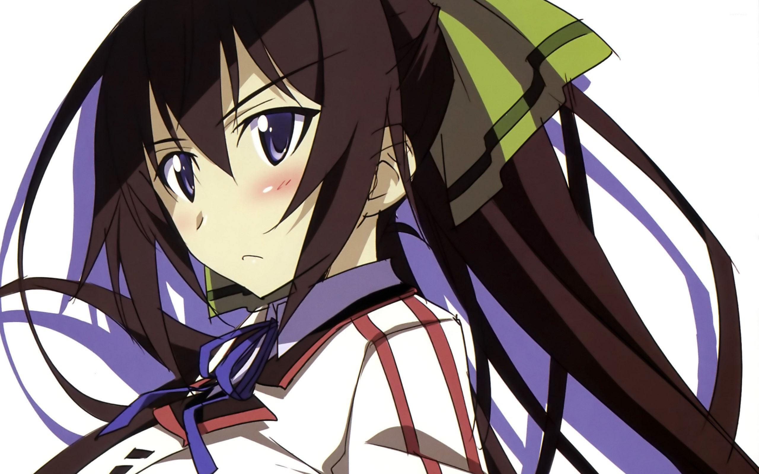 shinonono houki is wallpaper anime wallpapers 10153