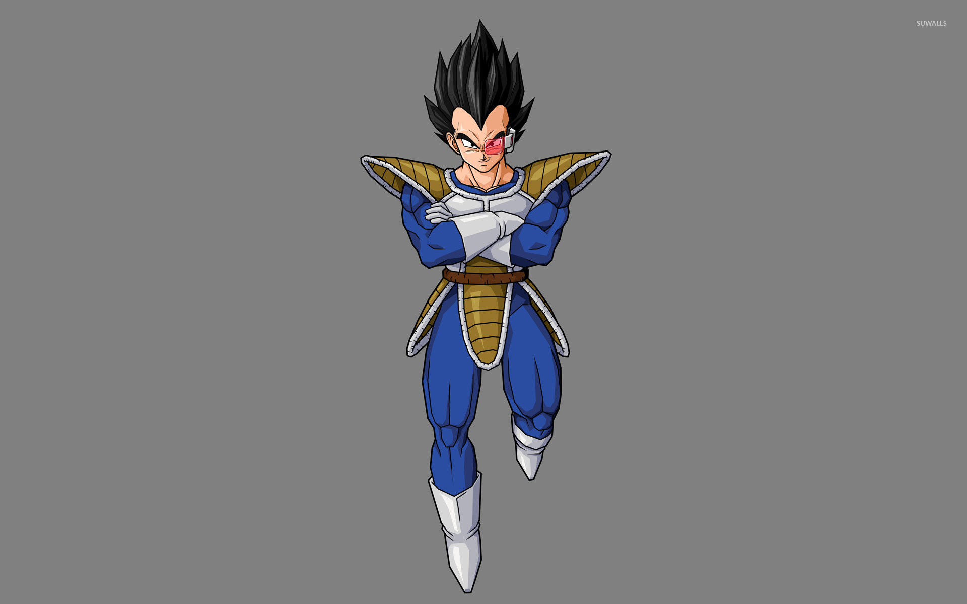 vegeta - dragon ball z [2] wallpaper - anime wallpapers - #7120