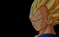 Vegeta - Dragon Ball Z wallpaper 2560x1600 jpg