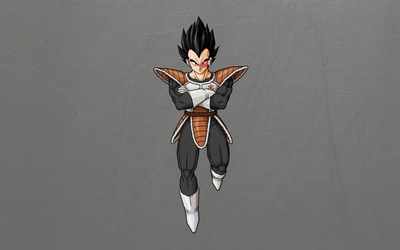 Vegeta from Dragon Ball wallpaper
