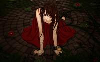 Yuki Kuran - Vampire Knight wallpaper 2560x1600 jpg