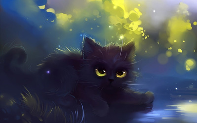 Black kitten wallpaper
