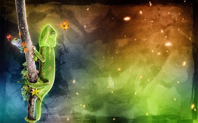 Chameleon, frog and butterflies wallpaper