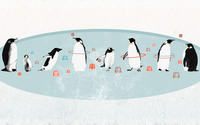 Circus penguins wallpaper 2560x1600 jpg