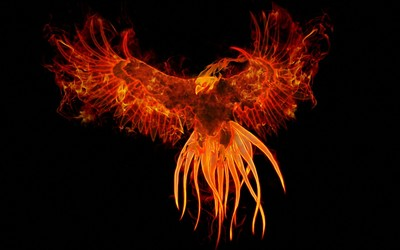 Firebird wallpaper