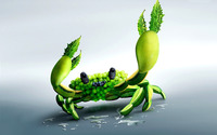 Fruit crab wallpaper 1920x1200 jpg