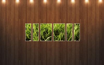 Grass under the spotlight wallpaper