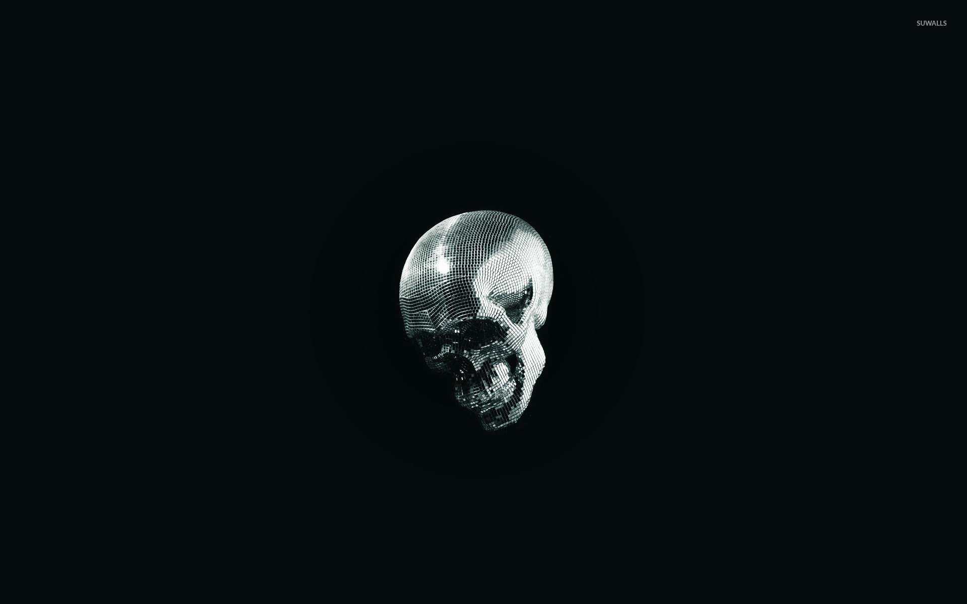 I live inside your face skull wallpaper - Funny wallpapers