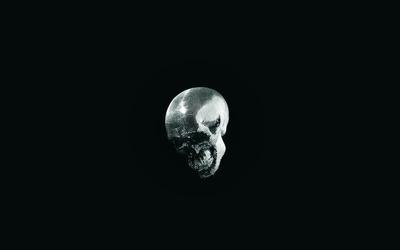 Mirror skull wallpaper