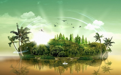 Peacefull island sheltering various birds Wallpaper