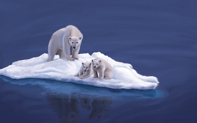 Polar bears on ice wallpaper