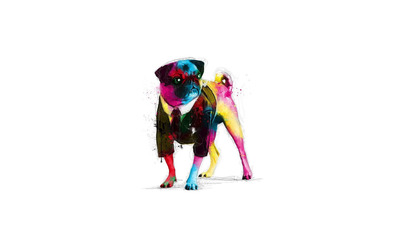 Psychedelic pug wallpaper
