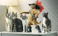 Puss in Boots [6] wallpaper 1920x1200 jpg