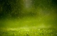 Rain wallpaper 1920x1200 jpg